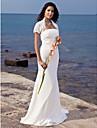 Mermaid / trompeta matura fara bretele / perie tren sifon nunta rochie de lan ting bride®