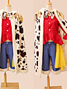 deux ans apres ver. Monkey D. luffy cosplay costume
