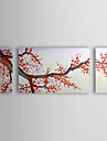Oil Painting Floral Cherry Blossom Red Plum Flowers with Stretched Frame Set of 3 1307-FL0164 Hand-Painted Canvas