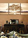 toile set Paysage / A fleurs/Botanique Modern / Classique,Trois Panneaux Toile Horizontale Imprimer Art Decoration murale For Decoration