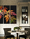 Stretched Canvas Print Art Botanical Colorful Leaves Set of 3
