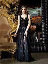 TS Couture Prom / Formal Evening Dress - Black Plus Sizes Sheath/Column V-neck Sweep/Brush Train Lace