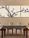 e-Home® sträckta canvas konst rosa magnolia dekoration målning uppsättning av 3