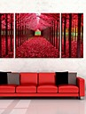 e-Home® sträckt duk konst rött trä dekorationsmåleri uppsättning av 3