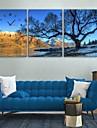 e-Home® träden på älvstranden klockan i canvas 3st