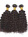 Human Hår vävar Mongoliskt hår Sexigt Lockigt 6 månader 3 delar hår väver
