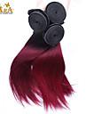 """3pcs / lot 10 """"-24"""" brasilianskt jungfru hårfärg 1b / 99j rakt människohår väver"""