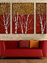 e-FOYER toile tendue art branche peinture decoration ensemble de 3
