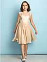 Lanting Bride Knee-length Lace Junior Bridesmaid Dress - Mini Me A-line V-neck with Lace