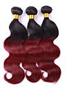 Nyans Brasilianskt hår Vågigt 3 delar hår väver