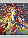 pictate manual de arta moderna abstract panza de animale cal pictură în ulei de perete cu rama întinsă gata să stea