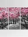 canvas Set Abstrakta landskap Moderna,Tre paneler Kanvas Horisontell Print Art väggdekor