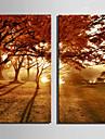 canvas Set Landskap Europeisk Stil,Två paneler Kanvas Vertikal Print Art väggdekor For Hem-dekoration
