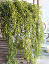1 Gren Polyester Plast Plantor Annat Väggblomma Konstgjorda blommor 65(25.59\'\')
