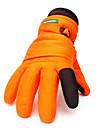 Gants de ski Gants hivernaux Tous Gants sport Garder au chaud / Etanche / Resistant au vent Gants Ski / Snowboard Toile / ToisonGants de