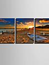 canvas Set Landskap Moderna,Tre paneler Kanvas Vertikal Print Art väggdekor For Hem-dekoration