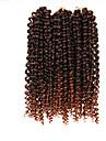 Nyans Brasilianskt hår Lockigt 6 månader 3 delar hår väver
