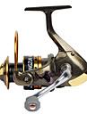 Fiskerullar Snurrande hjul 2.6:1 11 Kullager utbytbar Generellt fiske-AF5000