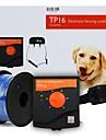 Pisici Câine Antrenament Electronic Impermeabil Electric Reîncărcabil