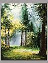 Pictat manual Natură moartă Orizontal,Mediteranean Stil European Un Panou Canava Hang-pictate pictură în ulei For Pagina de decorare