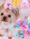 Câine Accesorii de Păr Îmbrăcăminte Câini Draguț Casul/Zilnic Nod Papion Mov Albastru Roz