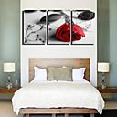 Protezala Canvas Art Cvjetni Lonely Roses skup od 3