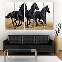 e-HOME® plátně umění běžícího koně dekorativní malby sadu 5