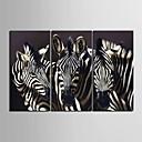 e-HOME® plátně umění zebra dekorace malování set of 3