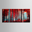 電子home®は3のキャンバスの芸術赤い木装飾画セットを伸ばし