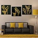 E-home® rastegnut na čelu platnu print umjetnosti cvijet bljesak djelovanje dovelo set 3