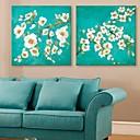 電子home®は2のキャンバスの芸術の花装飾画セットを伸ばし