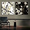 E-home® pruži dovela platnu print umjetnosti šljive cvatu bljesak djelovanje vodio set od 2