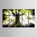 e-HOME® plátně jsi ten strom dekorativní malby sadu 5
