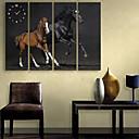 E-home® dva konja sat platnu 4pcs
