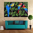 e-HOME® plátně umění barva papoušek dekorace malování Sada 3