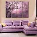 E-home® pruži platnu si puna cvijeća ukrasne slikarstvo set 4