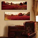 E-home® pruži platnu si crvenu vrt ukrasne slikarstvo set 2