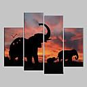 4個セットキャンバスプリントアート動物の象
