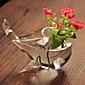 Vases-Vrt Tema(Obala,Staklo Non-personalizirane