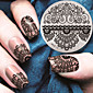 2016 nejnovější verze módní vzor krajky květiny nail art ražení jako šablona desky