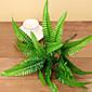 Hedvábí Rostliny Umělé květiny